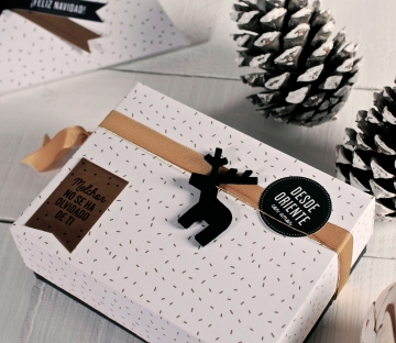 Caja regalo impresa cubeta con tapa