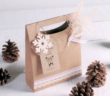 Caja regalo en forma de bolsa