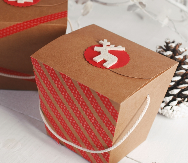 & Noodle box for Christmas gifts - SelfPackaging
