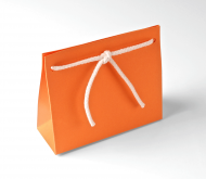 Gift Bag with Cord