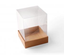 Schachtel für Warengruppen