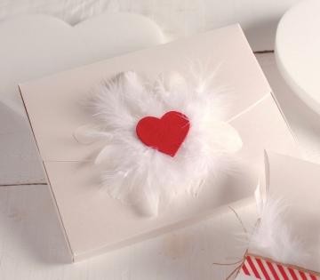Caja con corazón y plumas