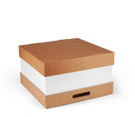Box for large cakes