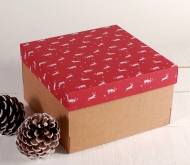 Gift box with reindeers