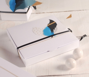Gift box with feathers